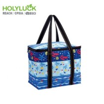 Business Standard Custom Water Bottle Cooler Bag Eco Grocery Bag Reusable