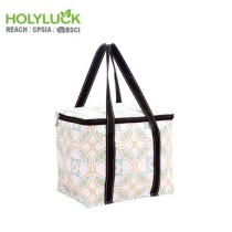 Holy Luck Cute Lunch Box With Bag Foldable Beach Bag With Cooler