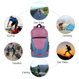 Copy HOLY LUCK Lightweight Sport Backpack Packable Hiking Daypack Foldable Small Travel Camping Bicycle Canvas Bag for Women Men (Grey)