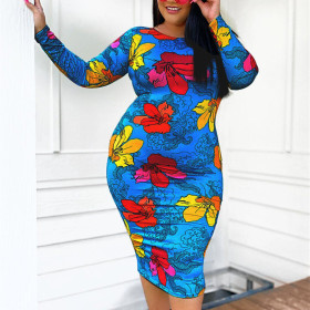 Printed long sleeve dress (without belt)