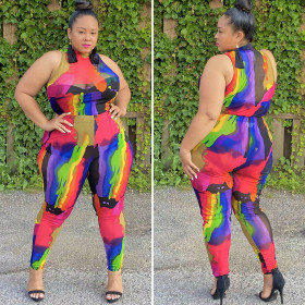 Color printed sleeve less half high collar sleeveless shirt women's pencil pants set