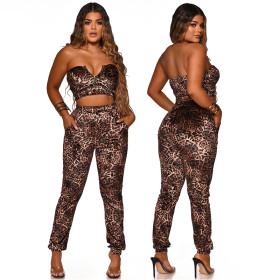 Two piece Leopard Print Set