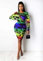 Color, leopard print, corns, bandage, dress