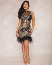 Fashion, sequins, mesh, perspective, dress