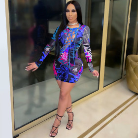 Mesh, perspective, bandage, tight fitting, long sleeve, dress