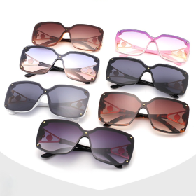 Rivet, sunglasses, Siamese, sunglasses, retro