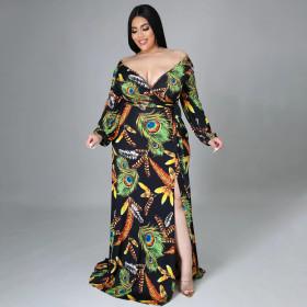 Large, feather print, split dress