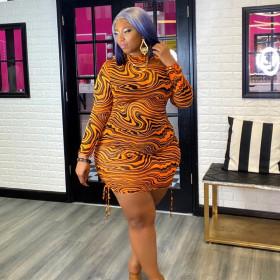 Mesh, print, pleat, dress