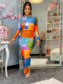 High neck, multicolor, cashew print, dress