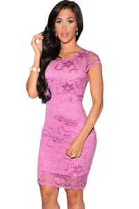 Fuchsia Enticing Lace Surface Backless Bodycon Dress with Lining