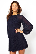 Lace Vintage Dress with Blouson Sleeves