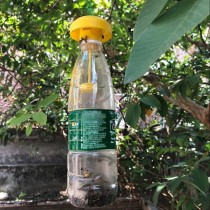 Wasp Trap Insect Trap DIY Wasp Fly Catcher Bugs Beetle Control