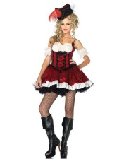 Ravishing Rogue Pirate Costume 10348