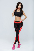 Block Color Gym Tight Leggings