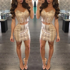 Sexy Two-Piece Sequins Straps Club Dress