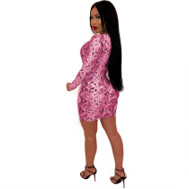 Snake Skin Sexy Long Sleeve Plung Bodycon Dress
