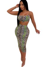 Snake Skin Bra Top and Midi Skirt