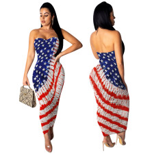 Print Flag Strapless Long Dress