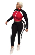 Sports Sexy Tight Contrast Crop Top and Pants Set