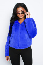Plain Color Zipper Plush Hoody Coat