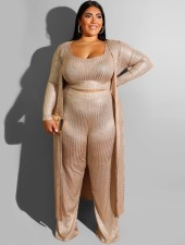 Plus Size Metallic Metallic Pants Suit