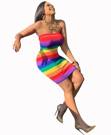 Rainbow Sexy Tube Dress