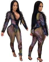 Sexy bodycon-jumpsuit met zwarte mesh