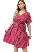 Plus Size V-Neck Striped A-Line Dress