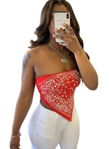 Summer Retro Print Strapless Crop Top
