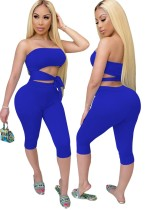 Zomer sexy tweedelige pure bodycon shorts set