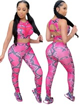 Sports Sexy Snake Skin Crop Top and Legging Set