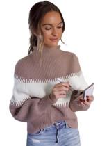 Bat Sleeving Contrasterende High Neck Regular Sweater