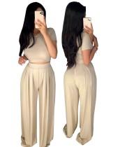 Sommer Sexy Plain Crop Top und Plissee Loose Pants Set