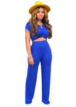 Summer Casual Plain Crop Top and Pants Set
