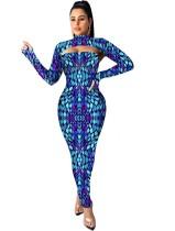 Drucken Sie sexy ausgeschnittenes langes kurviges Kleid mit vollen Ärmeln