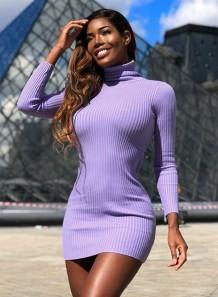Autumn Knitted Turtleneck Long Sleeve Mini Dress