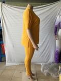 Plus Size Autumn Matching Plain Loose Shirt und Legging Set