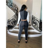 Automne 2pc Contrast Bodycon Zipper Crop Top and Pants Set