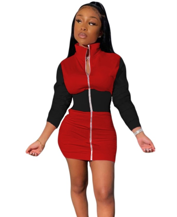 Contrast Color Turtleneck Zip Up Bodycon Dress