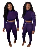 Sexy Two Piece Fitted Puff Sleeve Crop Top and Pants Set