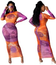 Dollar Print See Through Vestido largo con curvas sexy
