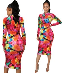 Autumn Snack Print Midi Dress with Full Sleeves