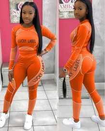 Sports Fitness Uzun Kollu Crop Top ve Legging Seti