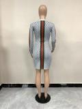 Autumn Animal Print Long Sleeve Mini Club Dress