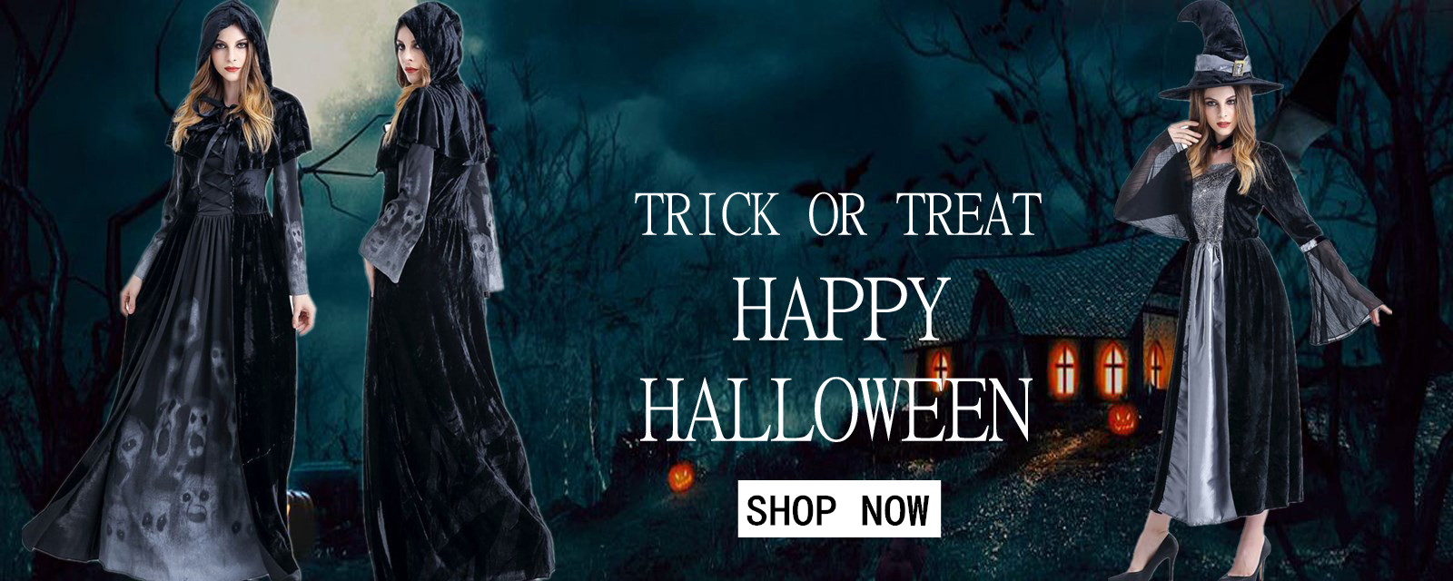 holidayHalloween Witch Long Costume Set