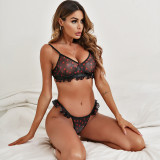 Sexy Heart Print Crop Bra and Panty Set