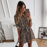 Autumn Leopard Print Casual Skater Dress