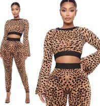 Herfstfeest sexy luipaard crop top en broek set