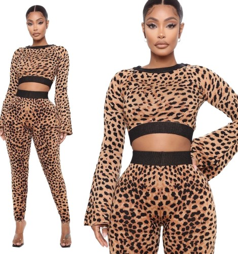 Autumn Party Sexy Leopard Crop Top and Pants Set