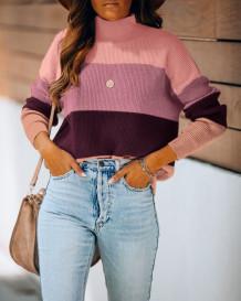 Autumn Contrast Turtleneck Regular Pullover Sweater Top
